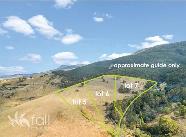 Lot 5, 6 & 7 Black Snake Road, TAS 7030