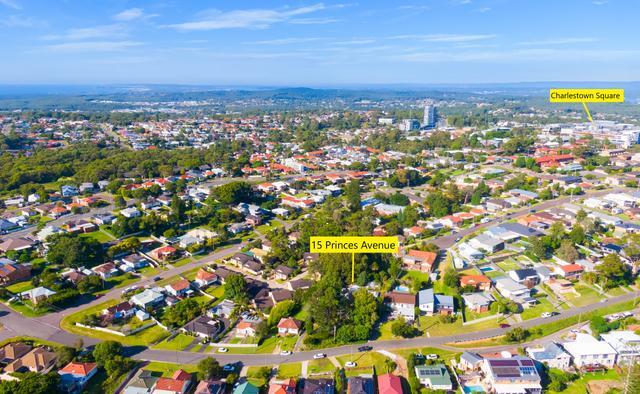 15 Princes Avenue, NSW 2290