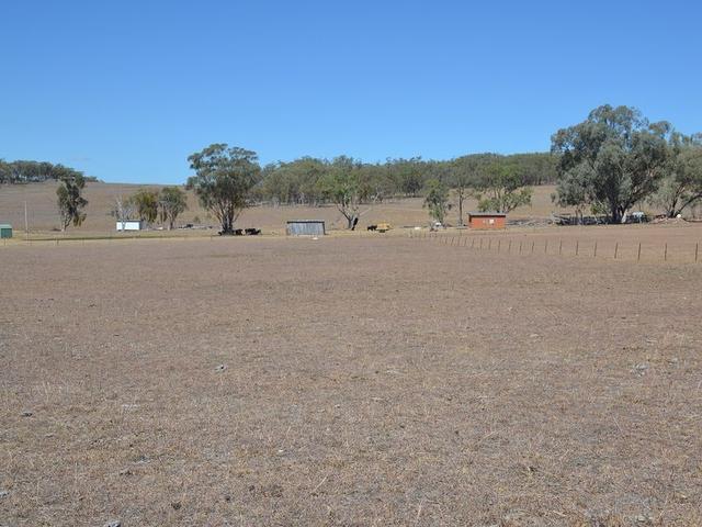 525 Old Bundarra Road, NSW 2360