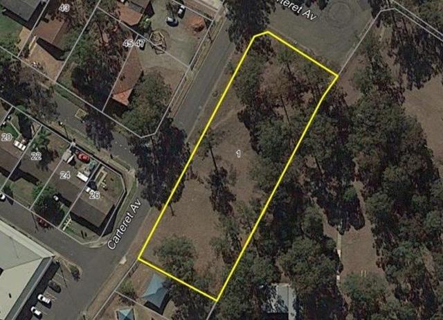 1 Carteret Avenue, NSW 2770