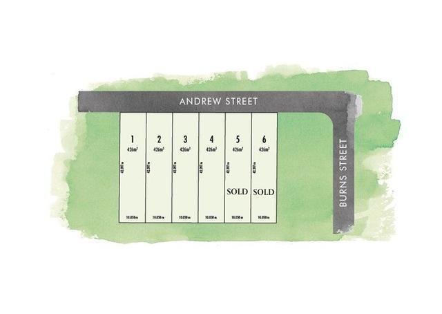40 Andrew Street, QLD 4157