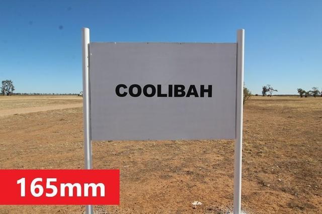 Coolibah, NSW 2406