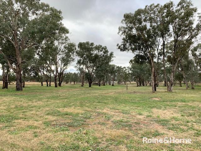 52 Bendick Murrell Road, NSW 2803