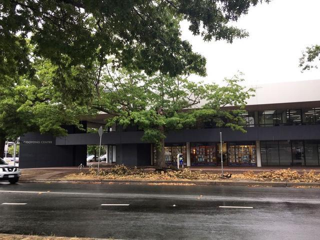 L1,2A/1 Torrens Street, ACT 2612